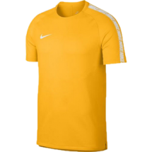 Nike breathe squad shirt (859850-845)