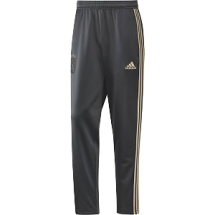 ajax adidas training pant (CW8012)